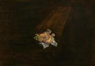 Knäuel, 50 x 70 cm, Öl auf Holz, 2011